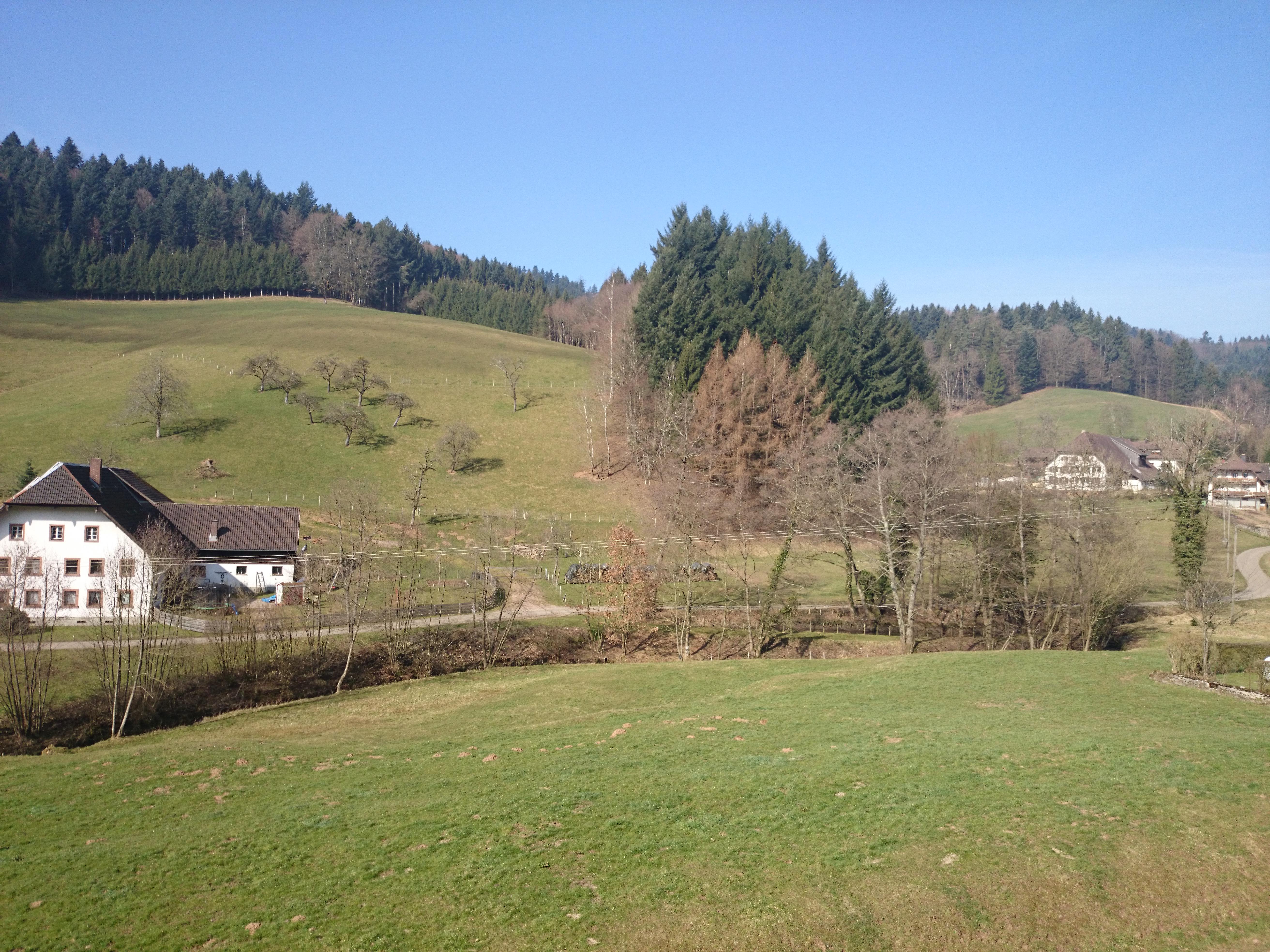 Sonnige Urlaubsgrüße aus dem Schwarzwald